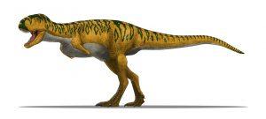 Abelisaurus Dinosauress