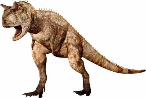 Dinosaures carnivores du cr tac dinosauress - Liste des dinosaures carnivores ...