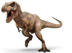 Dinosaures Carnivores Jurassique