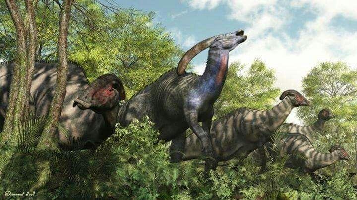 Dinosaures Herbivores Cretace