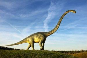 Dinosaures Herbivores Jurassique