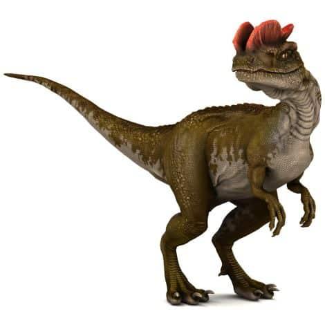 Dinosaures Omnivores Jurassique