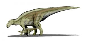 Maiasaura