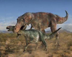 que-mangeaient-les-dinosaures